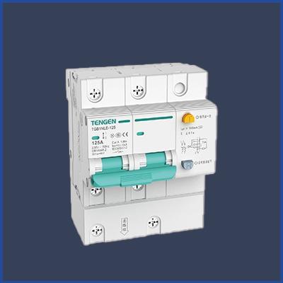漏电断路器(漏电)TGB1NLE